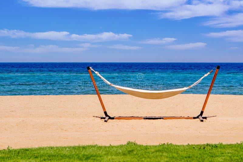 Hängmatta på stranden under solRöda havet royaltyfri bild