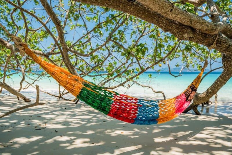 Hängmattaträdremmar hänger över stranden under wid för skuggadagtid arkivfoto