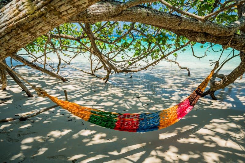 Hängmattaträdremmar hänger över stranden under wid för skuggadagtid royaltyfria bilder