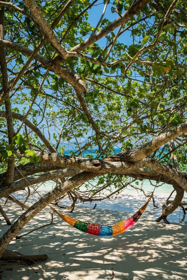 Hängmattaträdremmar hänger över stranden under wid för skuggadagtid fotografering för bildbyråer