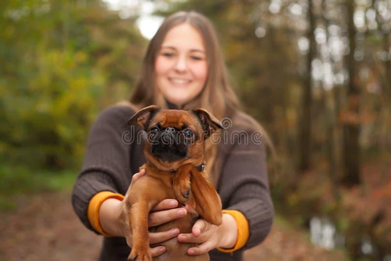 Här är hunden royaltyfria bilder