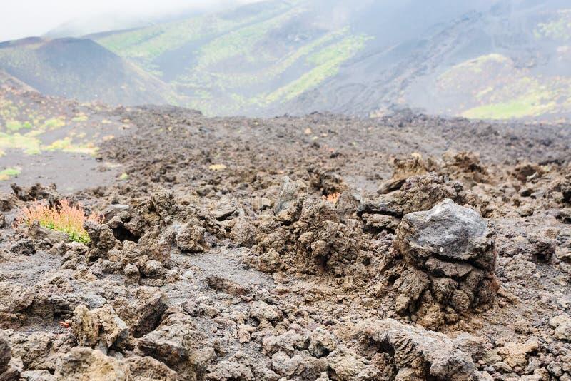 Härdat lavaslut upp på lavafält på Mount Etna arkivbilder