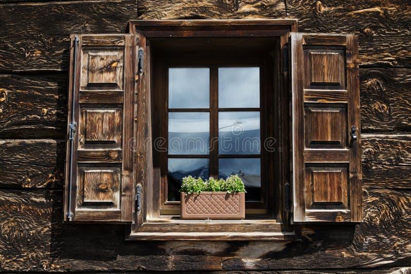 Härlig öppen träfönsterslutare med blommor som reflekterar blå himmel arkivbilder