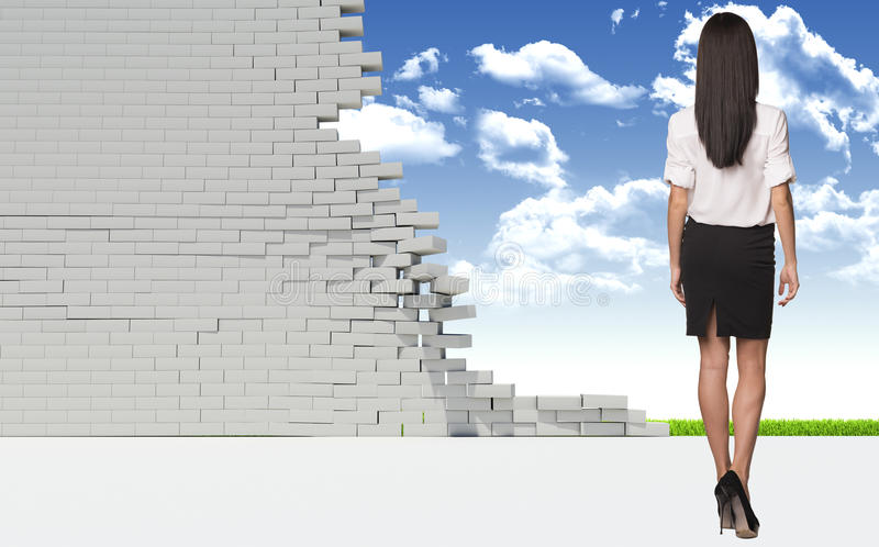 Härlig affärskvinna i skjorta och kjol baksida arkivfoton