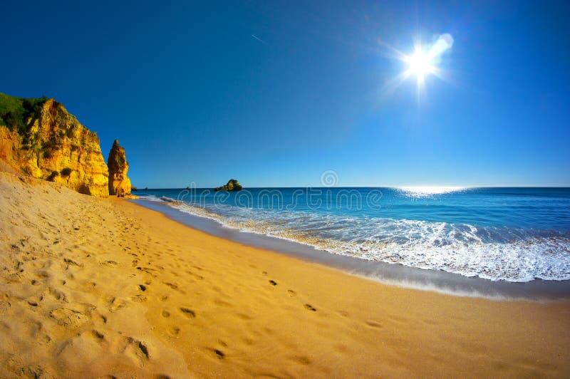 Härlig Algarve strandPraia da Rocha i Portugal royaltyfria bilder