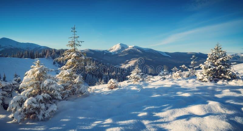 Härlig alpin panoramautsikt av korkade berg för snö royaltyfri bild