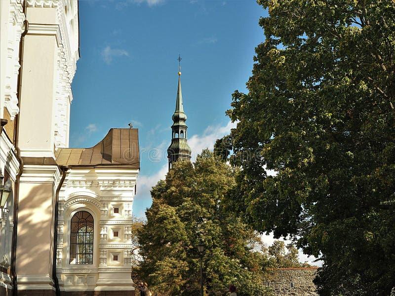 Härlig arkitektur i den gamla staden av Tallinn, Estland arkivfoto