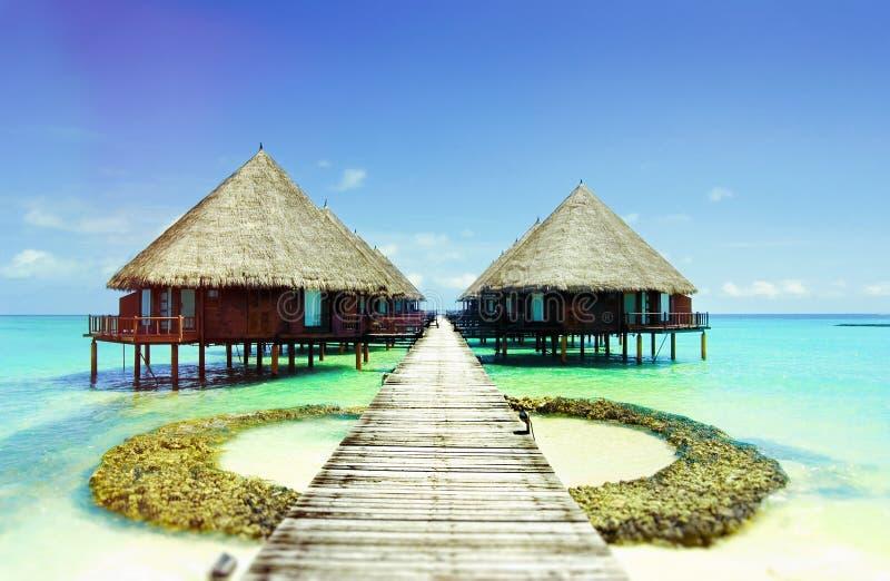 Härlig atollbungalow Maldiverna royaltyfri bild