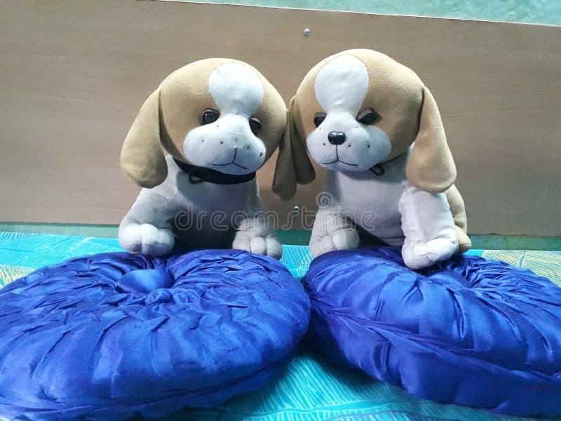 Härlig attraktiv mjuk leksaker två älskvärda valpar royaltyfri bild