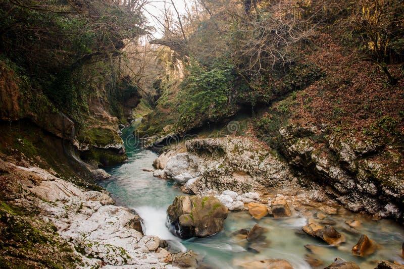 Härlig azur bergflod som flödar i den forntida Martvili kanjonen royaltyfri fotografi