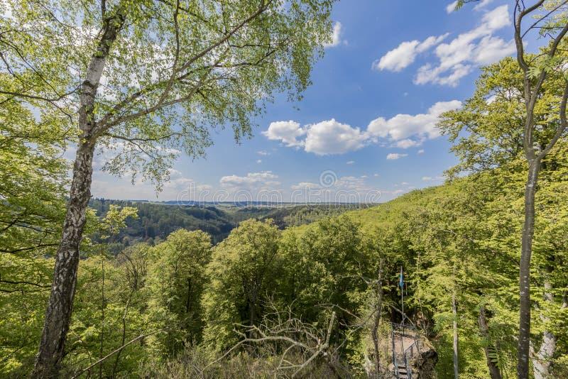 Härlig bästa sikt av Luxemburg skogar arkivbilder