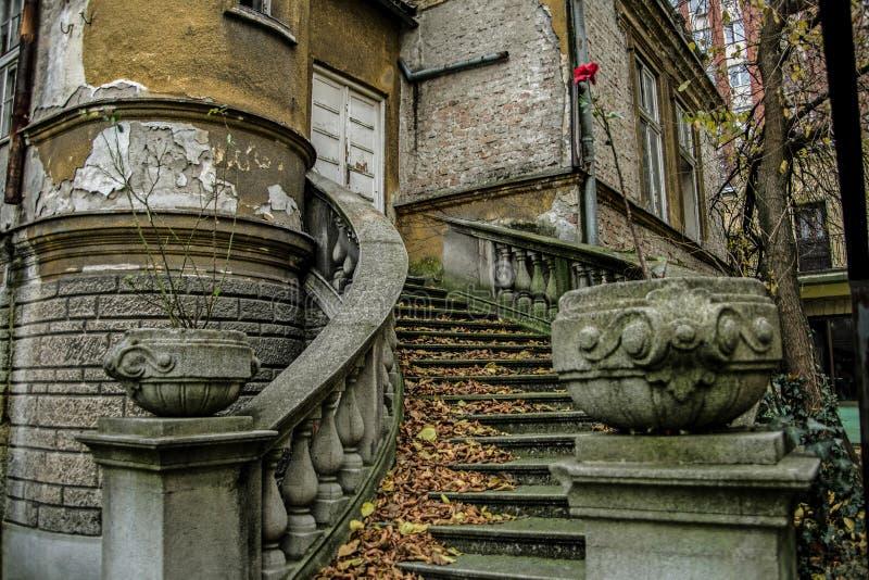 Härlig barock trappuppgång i ett övergett hus i Belgrade royaltyfri bild