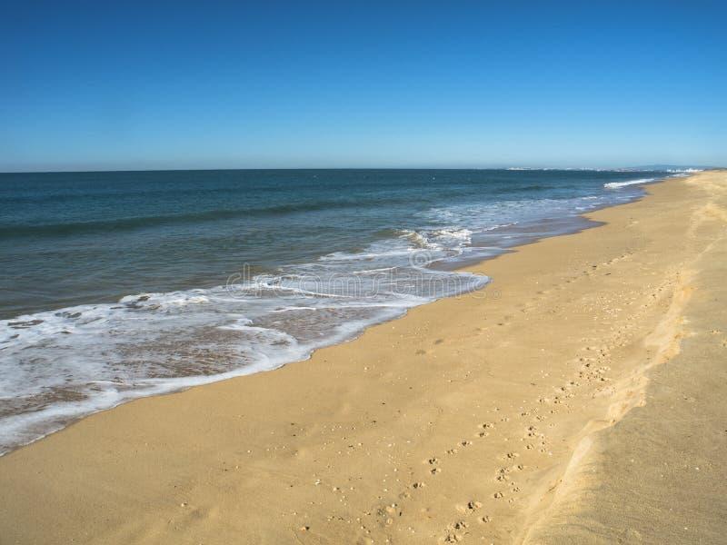 Härlig bedöva strand i Portugal royaltyfri bild