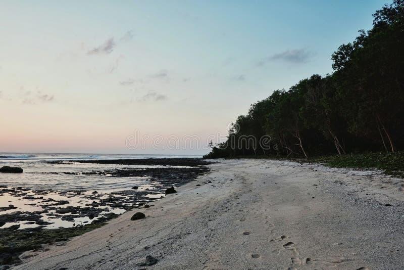 härlig bedöva tropisk strand för kust för paradisStilla havethav med rainforestdjungeln på solnedgången arkivfoton