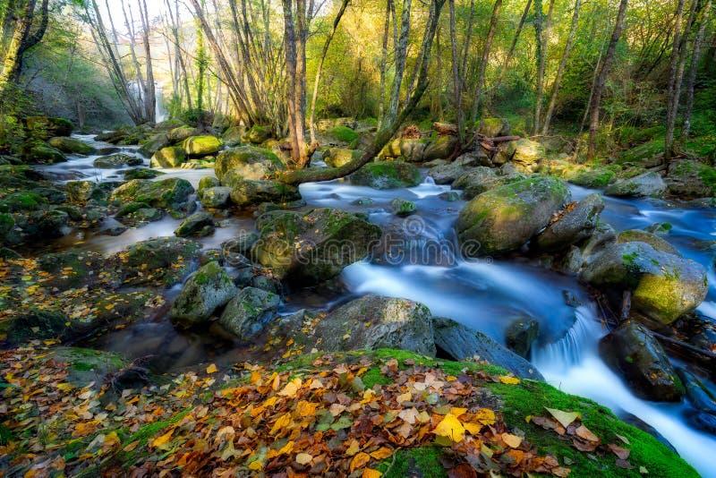 Härlig bergflod från Spanien, lång exponeringsbild royaltyfria foton