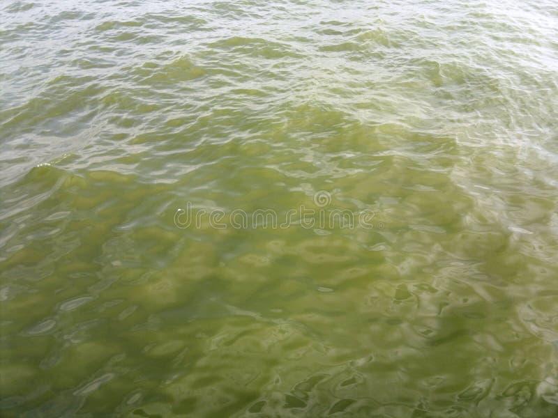 Härlig bild av vattenvågor arkivfoton