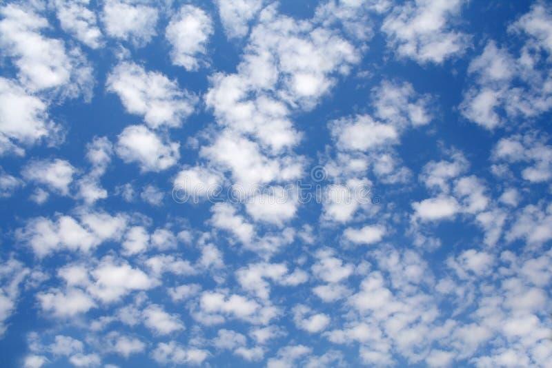 Härlig blå himmel med vita trasiga moln arkivbilder