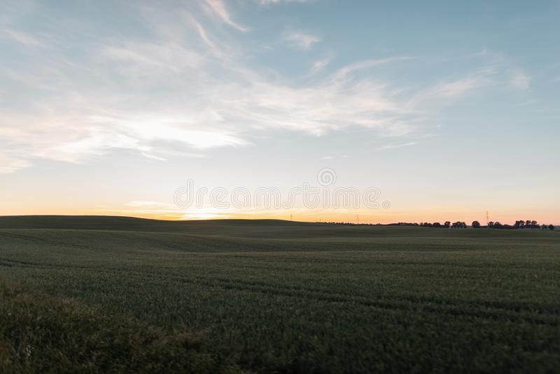 Härlig blå himmel och äng med grönt gräs på solnedgången Förbluffa rosa solnedgång för sommar på horisonten Landskapbygd arkivfoton