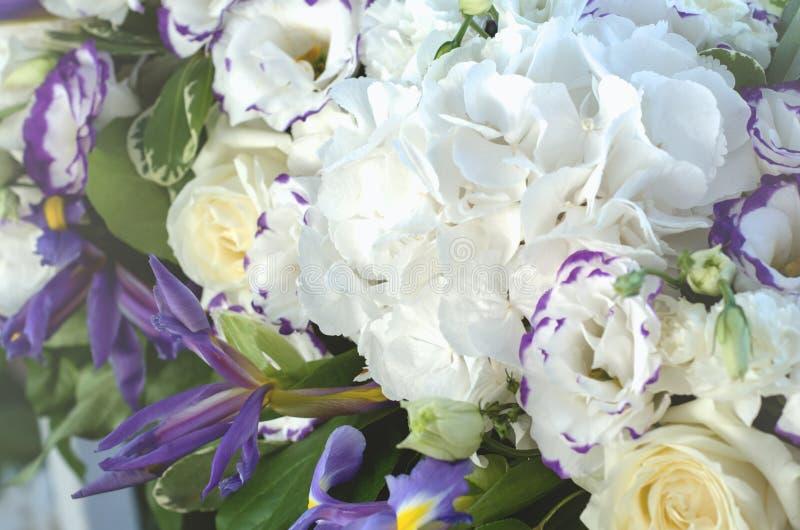 Härlig blå irisblomma, frodiga sidor, vit vanlig hortensia, delikata kräm- rosor med ljus bakgrund sommar för snäckskal för sand  royaltyfria foton