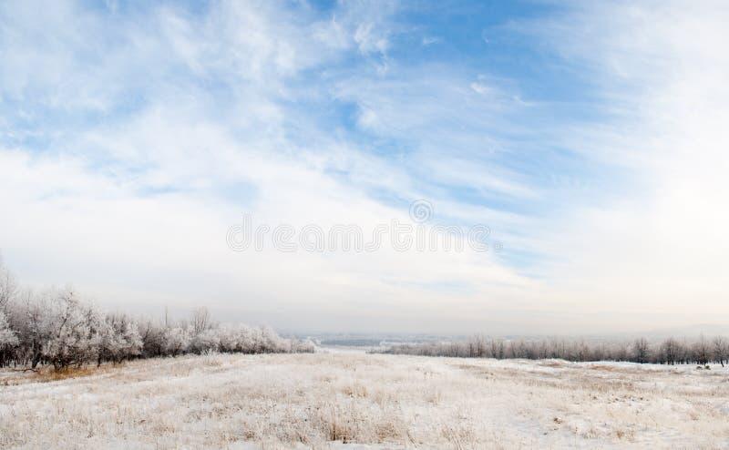 härlig blå panoramaskyvinter arkivbild