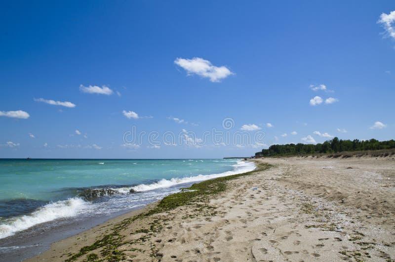 Härlig Black Sea strand, Shabla, Bulgarien royaltyfri foto