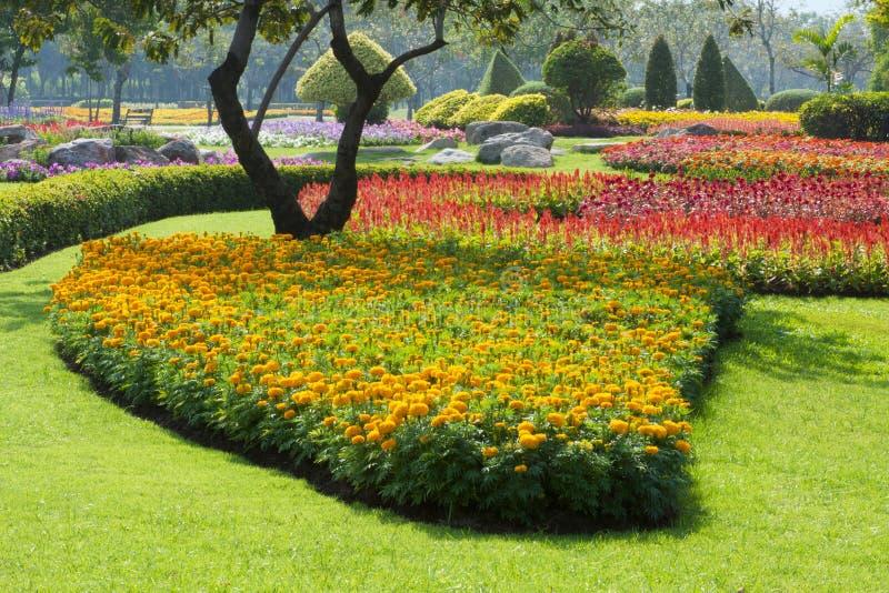 härlig blommapark royaltyfria foton