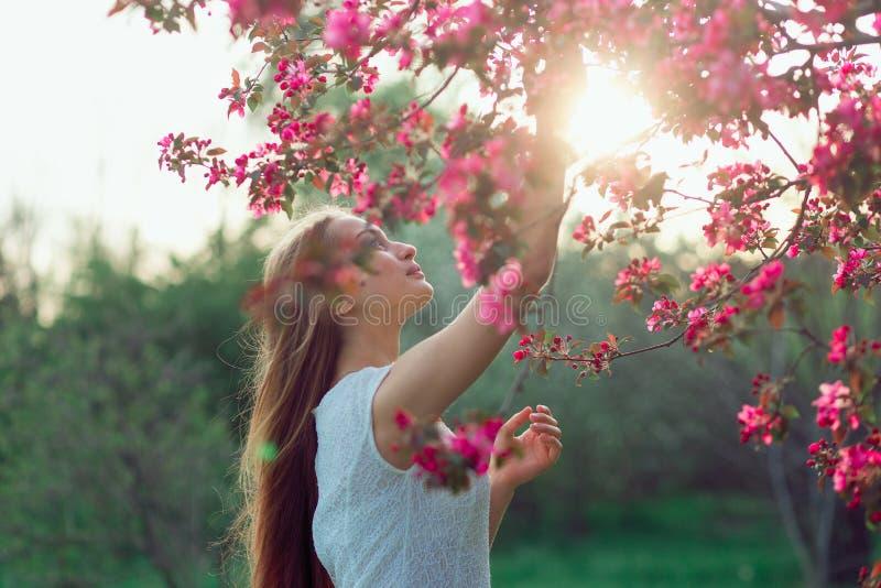 Härlig blond flicka med långt hår som rymmer den sakura filialen bland rosa körsbärsröda blomningar i vår Mörker med belysning royaltyfria bilder