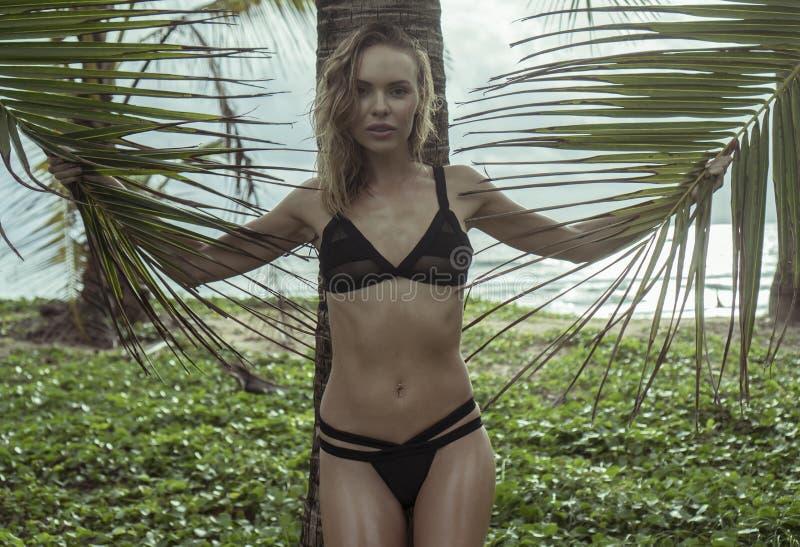Härlig blond glamourkvinna som bär svart swimwear på sidor för en palmträd för härlig sommar hållande i hennes händer royaltyfri fotografi
