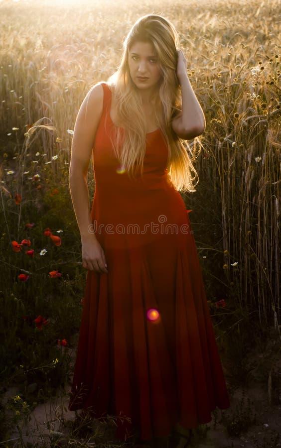 Härlig blond kvinna i ett vetefält på solnedgången royaltyfria foton