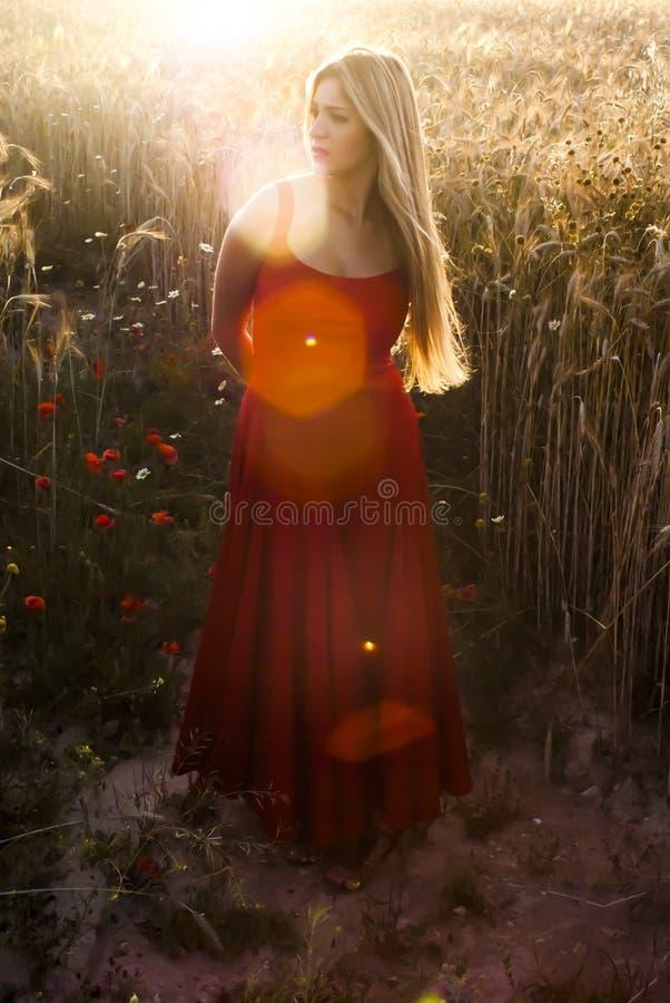 Härlig blond kvinna i ett vetefält på solnedgången royaltyfri bild