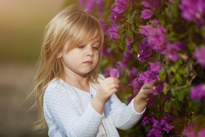 Härlig blond liten flicka med långt hår som luktar blomman royaltyfria bilder