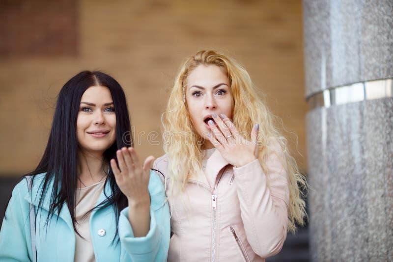 Härlig blondin och brunett utomhus arkivfoton