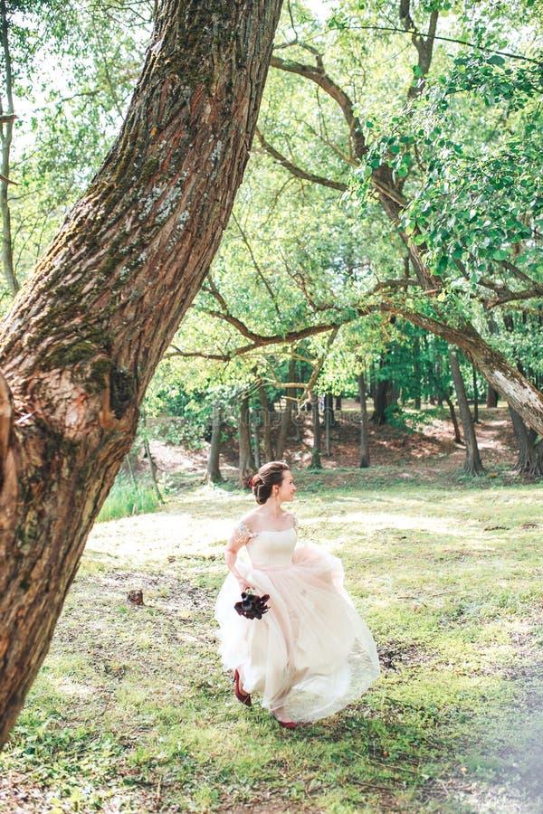 Härlig brud i den vita klänningen för tappning som går i parkera Ursnygg stilfull brud royaltyfri bild