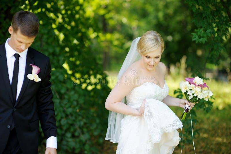 Härlig brud och brudgum royaltyfri fotografi