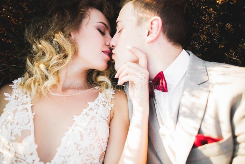Härlig brud och brudgum som utomhus omfamnar och kysser på deras bröllopdag royaltyfri fotografi