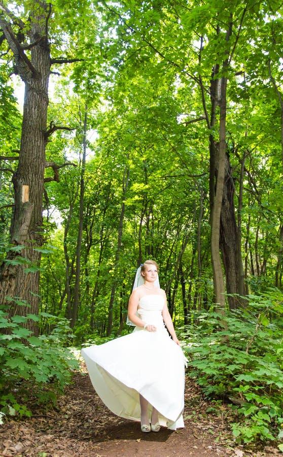 Härlig brud utomhus i en skog royaltyfri bild