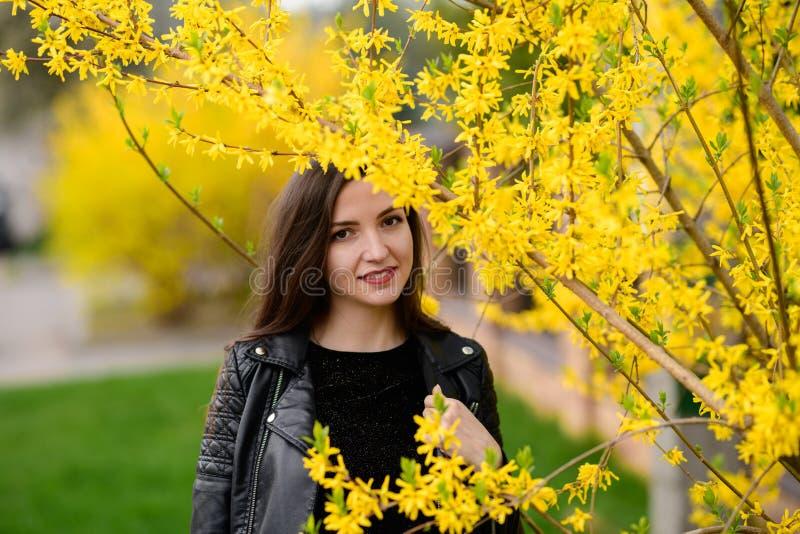 Härlig brunett nära den gula lövverket Den gulliga h?rliga leendekvinnan som g?r i gul h?st, parkerar Flickan in nära trädet arkivbild