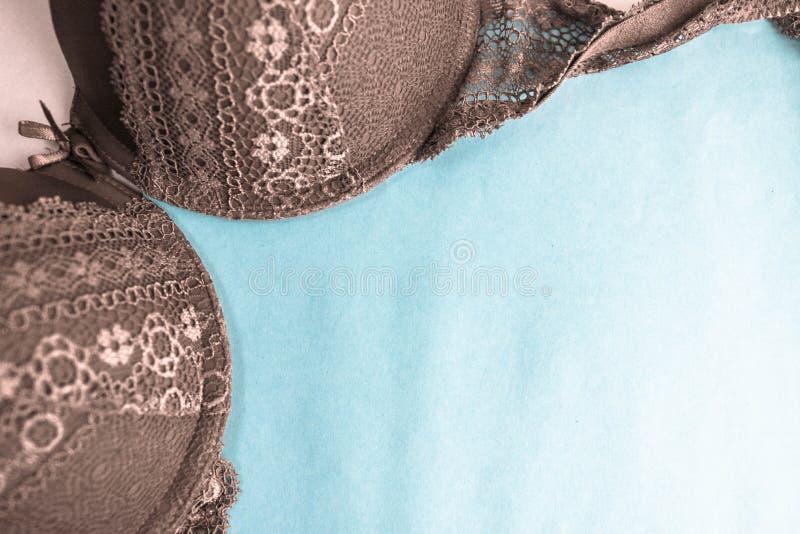Härlig brunt snör åt kvinnligt secial försiktigt behå-, underkläder- och kopieringsutrymme på en blå bakgrund Lekmanna- lägenhet arkivbild