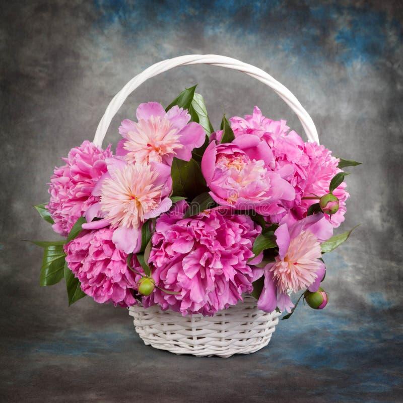 Härlig bukett av blommor - pioner dramatisk lampa royaltyfri bild