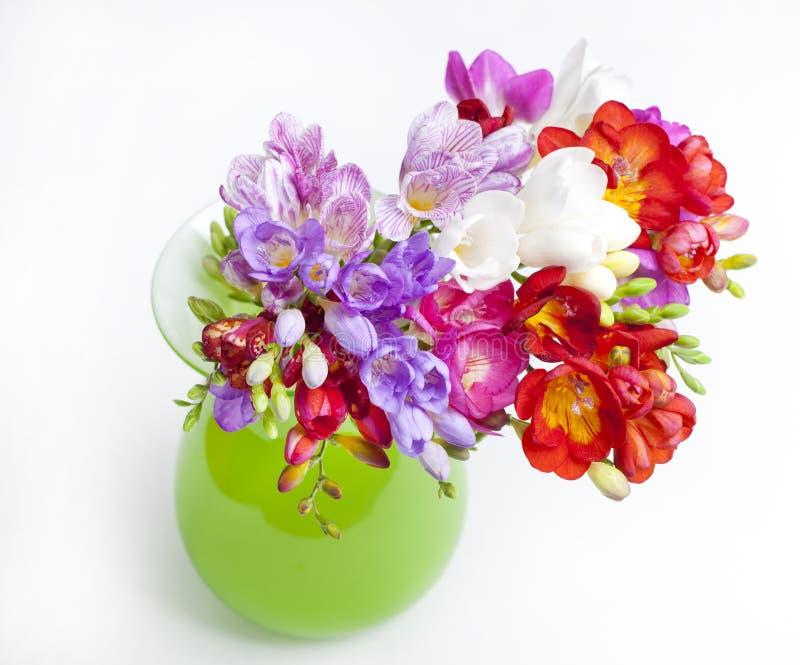 Härlig bukett av färgrik freesia i grön vas på en vit b royaltyfri foto
