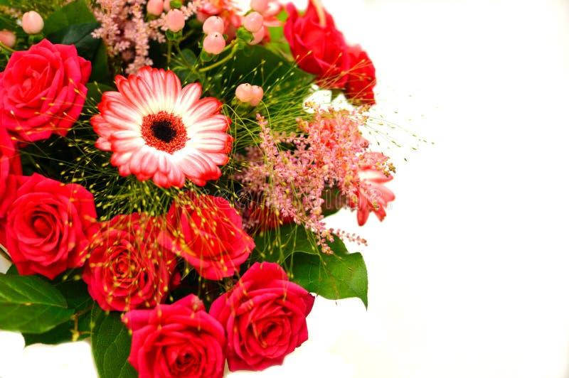 Härlig bukett av färgrika blommor på ett vitt bakgrundsslut royaltyfria bilder