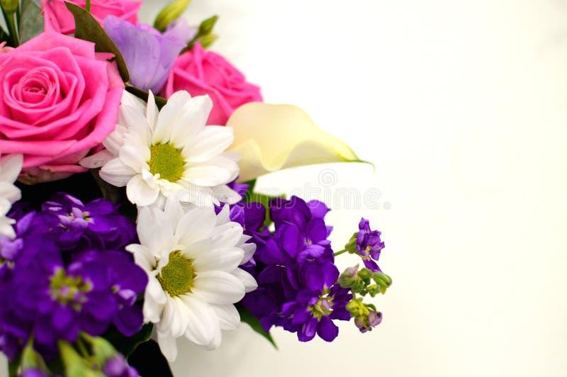 Härlig bukett av färgrika blommor på ett vitt bakgrundsslut royaltyfri fotografi