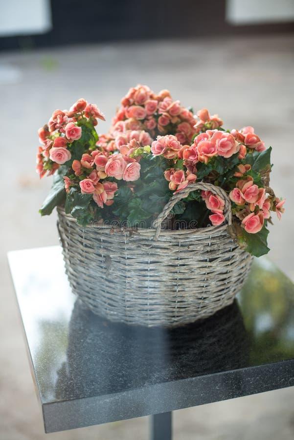 Härlig bukett av ljusa blommor i korg på tabellen fotografering för bildbyråer