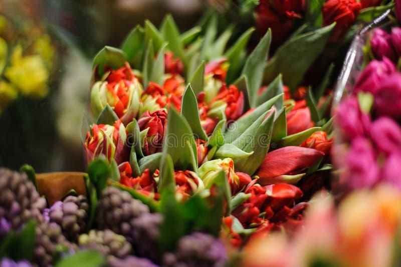 Härlig bukett av ljusa röda tulpan i en blomsterhandel arkivbilder