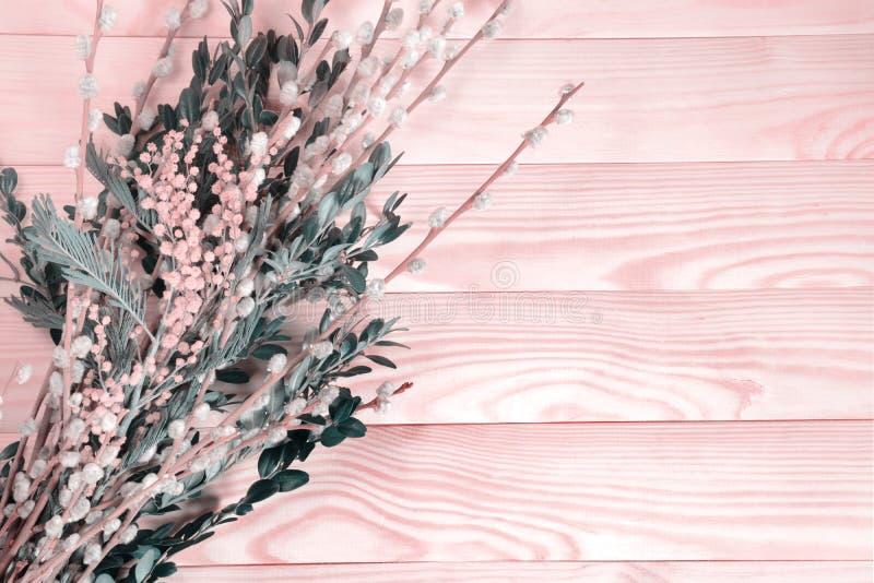 Härlig bukett av pussypilen och mimizy på en träbakgrund Gräns - rosa färgsignal royaltyfria foton