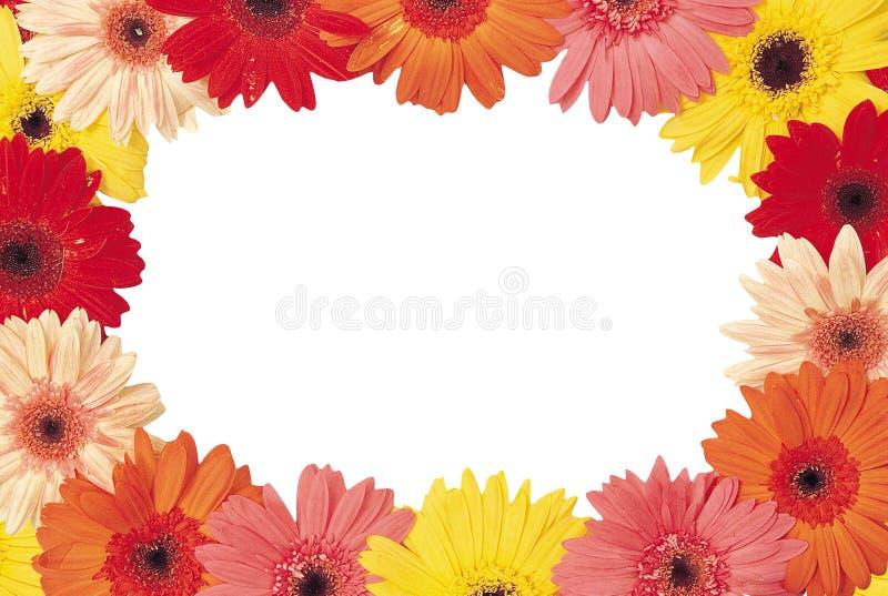Härlig bukett av röda och gula blommor på en vit backgroun vektor illustrationer