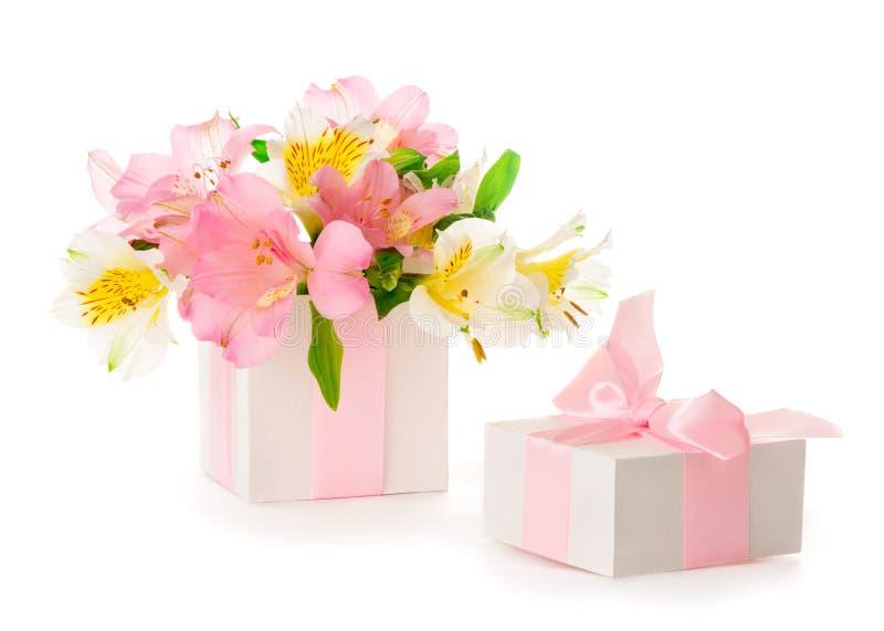 Härlig bukett av rosa Alstroemeria i en gåvaask fotografering för bildbyråer