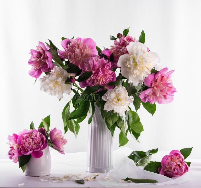 Härlig bukett av rosa och vita pioner royaltyfria foton