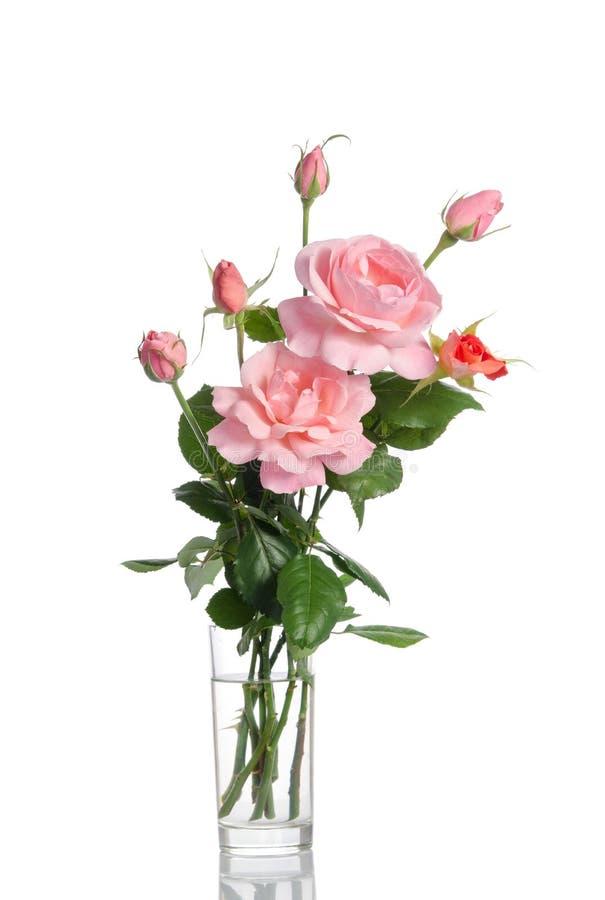 Härlig bukett av rosor i en glass vas fotografering för bildbyråer