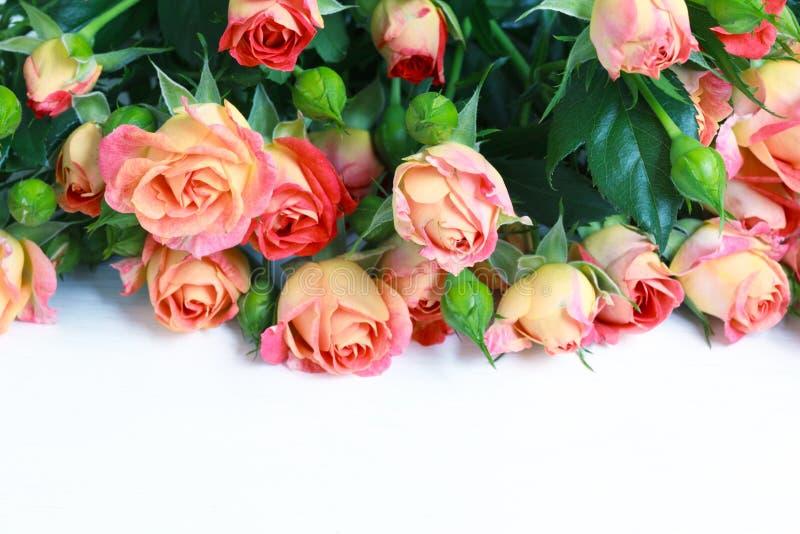 Härlig bukett av rosor på den vita trätabellen, selektiv focu royaltyfri fotografi
